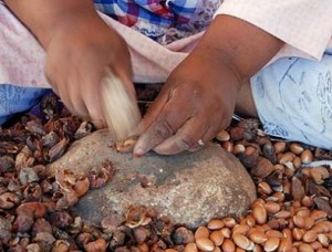 Método tradicional de extracción del aceite de argán