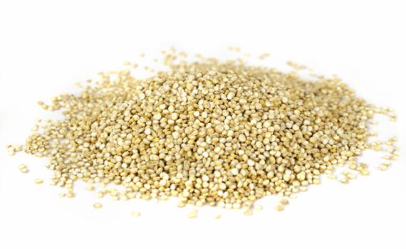 Semillas de la quinoa el pseudocereal