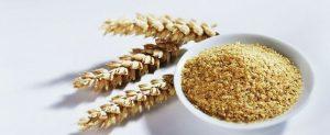 Aceite de Germen de Trigo del corazón del trigo