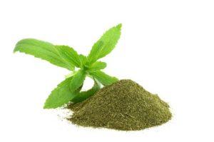 La bella y eficiente planta de la Stevia