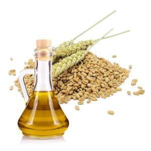 Aceite de germen de Trigo contraindicaciones principales