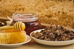 Beneficios propolis salud