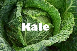 kale superalimento superplanta
